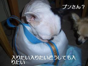 20050718185056.jpg