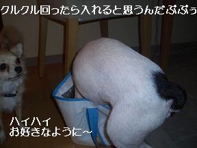 20050718185108.jpg