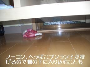20050801215733.jpg