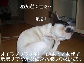 20050801215755.jpg