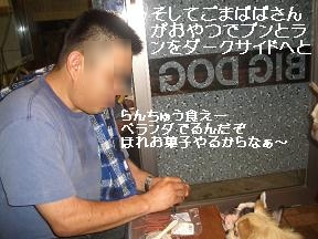 20050817091509.jpg