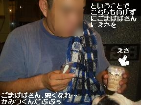 20050817091524.jpg