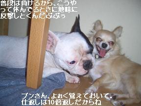 20050821181604.jpg