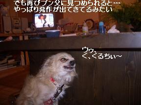 20050821183614.jpg