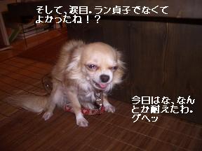 20050821183634.jpg