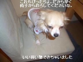 20050830071111.jpg