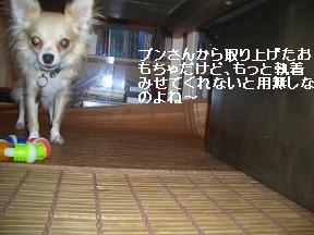20050912223615.jpg