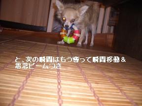 20050912231003.jpg