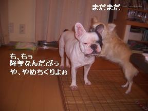 20050917091046.jpg