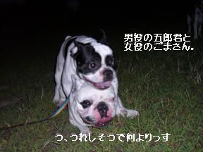 20050921011602.jpg