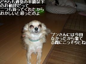 20050929005102.jpg