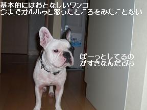 20051001091854.jpg