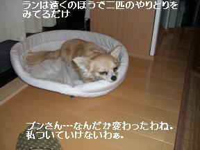 20051010121549.jpg