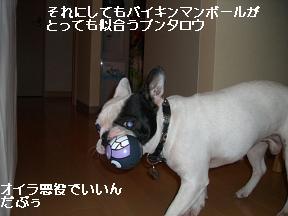 20051015091928.jpg