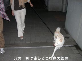 20051030095906.jpg