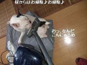 20051113110118.jpg