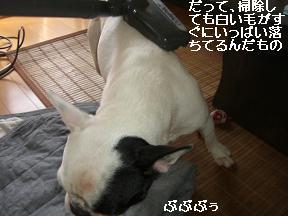20051113110126.jpg