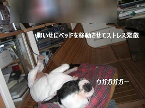 20051117174402.jpg