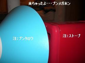 20051117174702.jpg