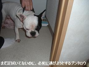 20051201165037.jpg