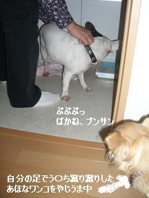 20051201165047.jpg