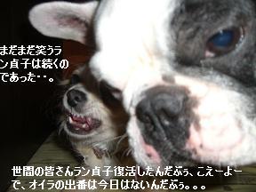 20051213100750.jpg