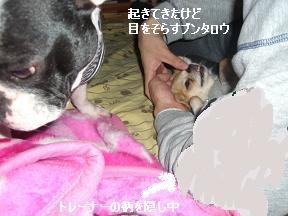 20051213155100.jpg
