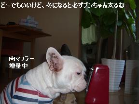 20051215103019.jpg