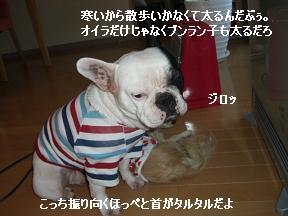20051215103024.jpg