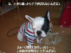 20051215103034.jpg