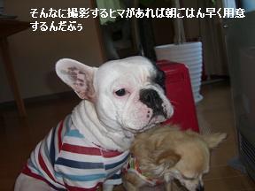 20051216103750.jpg