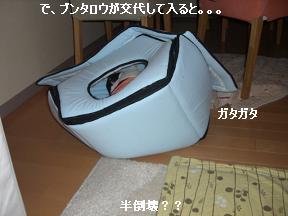 20051219100915.jpg