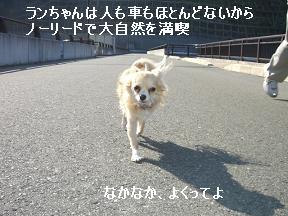20060103122230.jpg