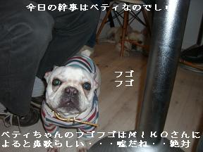 20060109113255.jpg