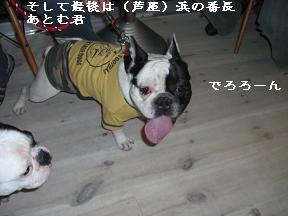 20060109113324.jpg