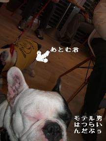 20060109113344.jpg
