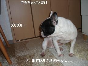 20060118102435.jpg
