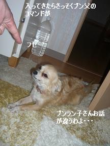 20060118102451.jpg