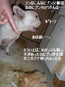 20060118102503.jpg