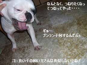 20060118102511.jpg