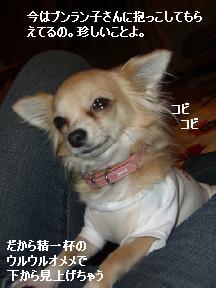 20060120104514.jpg