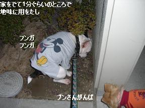 20060125104519.jpg