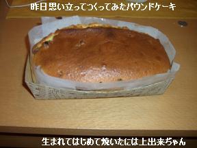 20060216104535.jpg