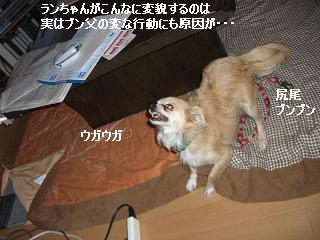 20060314110200.jpg
