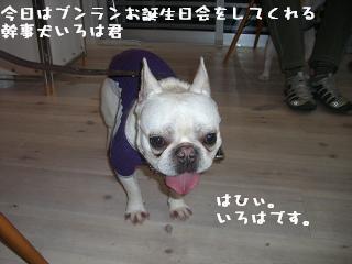 20060320111153.jpg