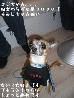 20060320111206.jpg