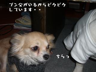20060324105009.jpg