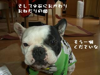 20060329104135.jpg