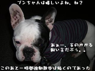 20060330105927.jpg