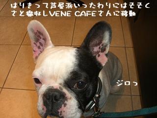 20060412104608.jpg